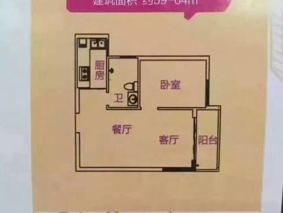 深圳龙华【毓林学府】