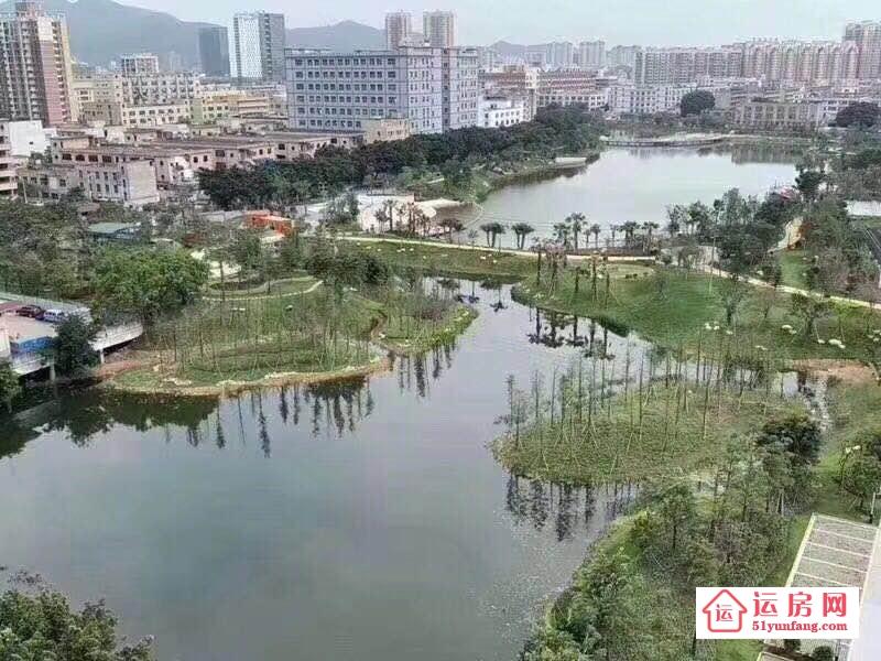 沙井小产权房【情人湖花园】十栋绿本统建楼