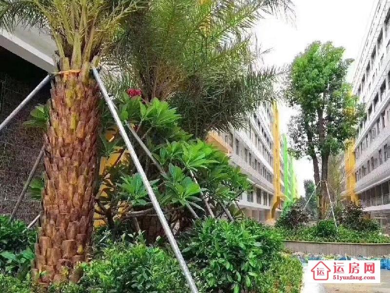 松山湖小产权房《松湖朗园》中心区800户花园小区房