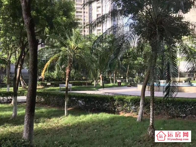沙井唯一最大村委统建楼《怡馨花园》沙井村委统建楼