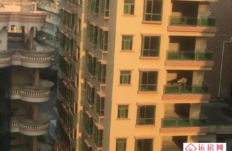龙岗布吉樟树布小产权房《小华庭》沙塘布站200米地铁房